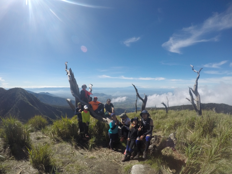 Mount Wiji